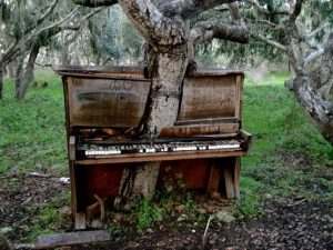 pianotree